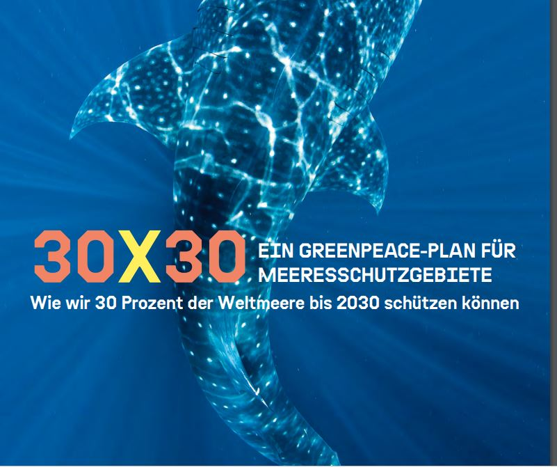 30x30: Greenpeace-Plan zum Meeresschutz