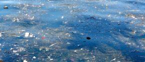 Mikroplastik belastet die Gewässer