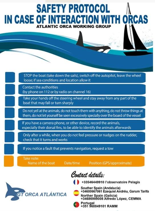 Verhaltensregeln bei Orca Kontakt -orcaiberia